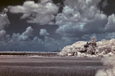 Mt Pleasant, SC - premier properties clouded