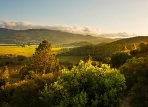 Napa Valley via Calistoga Ranch