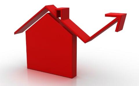 Real Estate professional advice