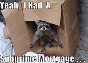 The majority of risky subprime mortgages went to minority families says the report