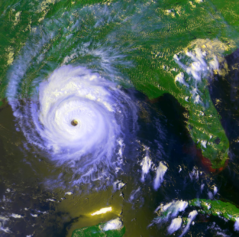 Hurricane Andrew's devastation in 1992 scared many private insurance companies away from Florida.