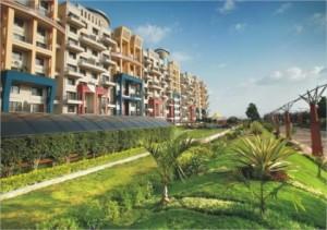 Prune real estate property