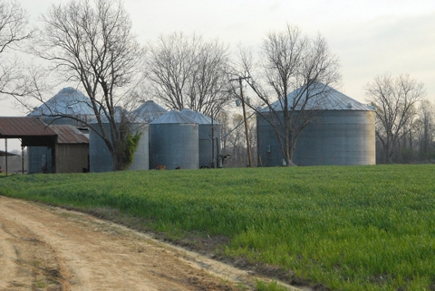 1473 +/- Acre Farm near Lonoke, AR