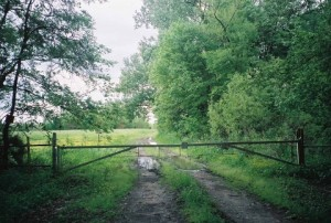 273 Acres Woodruff County - White River Frontage
