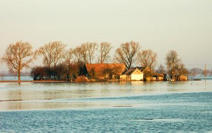 Flood insurance hurricane irene