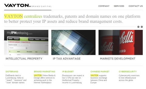 Vayton Brand Capital website