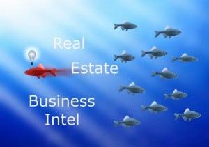 Real Estate BI