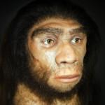 Neo-Realtors Vs Stone Age Decision Maker