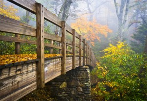 Footbridge in the Blue Ridge