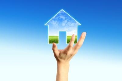 自从金融泡沫破裂以来 丧失抵押品赎回权的房产已成为房地产市场的重要组成部分