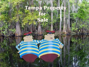 Tampa property for sale with Tweedledee