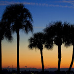 Luxury Home Market in Sarasota Improving