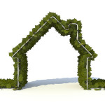 Eco-Friendly Home Improvements to Help Your Home Sell