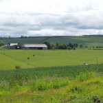 UK Farm Land Prices Will Continue to Rise in 2013
