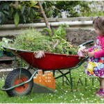 Top Spring Landscaping Tips