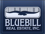 gI_117613_BlueBill Real Estate Inc