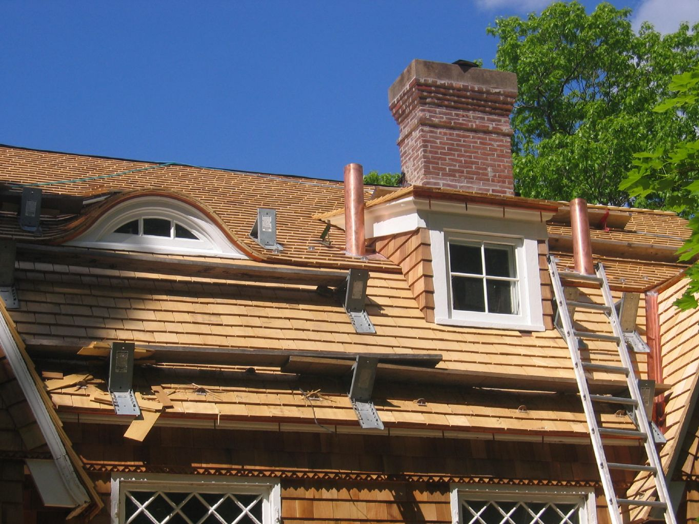 Cedar roofs - they look great but they're a maintenance nightmare!