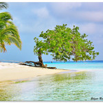 RealtyTrac Reveals Top 10 Beach Housing Markets