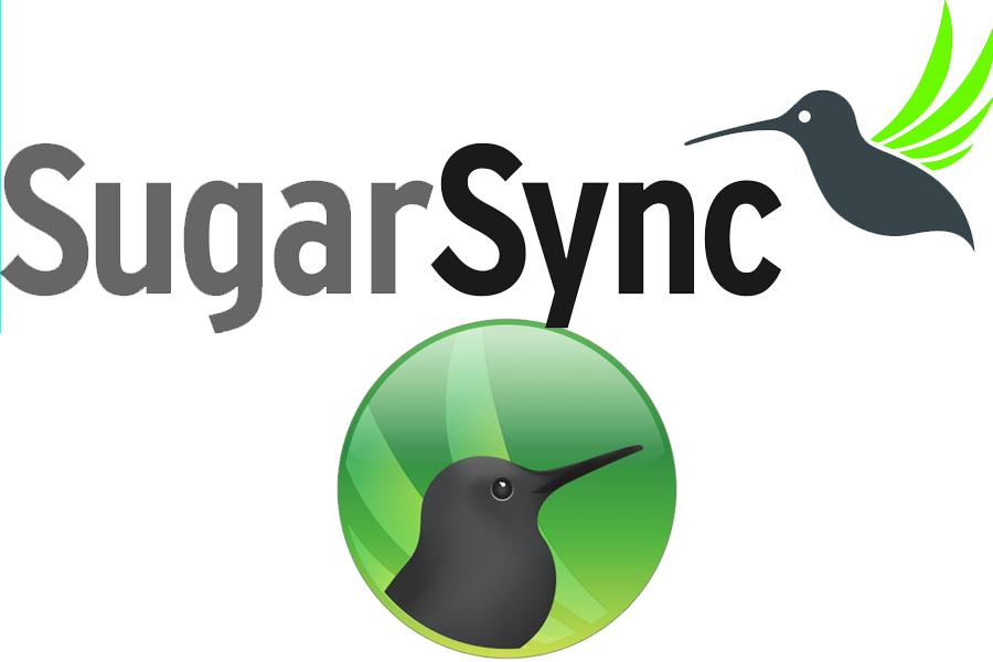 sugarsync1