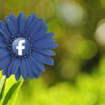 Facebook Launches New Keyword Tool
