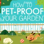 "How to ""pet-proof"" your garden – Infographic"