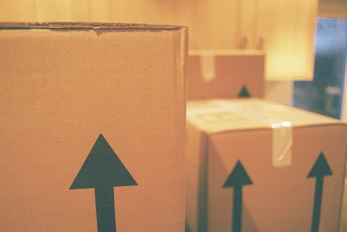Packing it In 6 Essential Moving Tips to Keep Your Things Safe