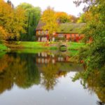Top 4 Places to Live if You Love Autumn