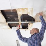 Mold:  What You Need to know About Your Home