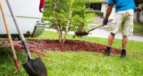 Back to Nature: 3 Landscaping Tips to Make Home Buyers Take Notice