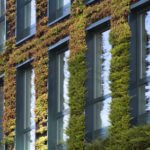 Think Green: 5 Sustainable Office Building Design Ideas