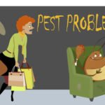 How to Rid Your Home of Pesky Pests – DYI