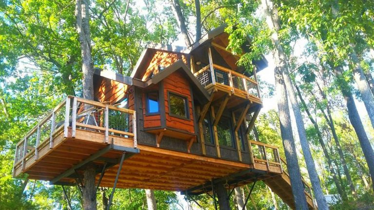 A Trio of Treehouse Developments