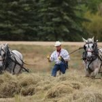 Acreage is Important:  Is Your Ranch in Need of a Property Upgrade?